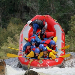 Lower Mitta River- One day white water rafting experience