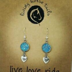 Aqua Paw print and heart Bling Glitter Earrings