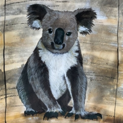 Koala print. Climate emergency artwork