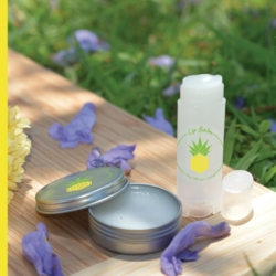 LIP BALM chemical free DIY kit