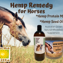 HEMP REMEDY HEMP PROTEIN MEAL FOR HORSES 3.5KG