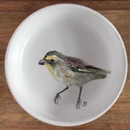 Striated Pardalote Trinket Dish