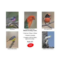 Greeting Cards – Pk 5 Assorted Birds