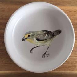 Striated Pardalote Trinket Dish II