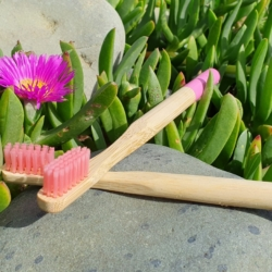 Adult Bamboo Toothbrush Medium Bristles