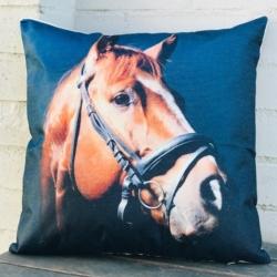 Cushion. Horse