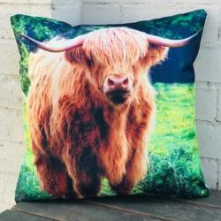 Cushion. Highland cow 3