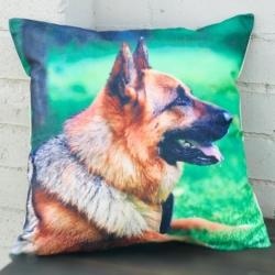 Cushion. German Shepherd (complete)