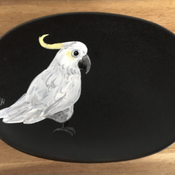 Sulphur Crested Cockatoo Soap Dish