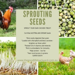 Sprouting Kit – Poultry and Birds -INCLUDES DELIVERY