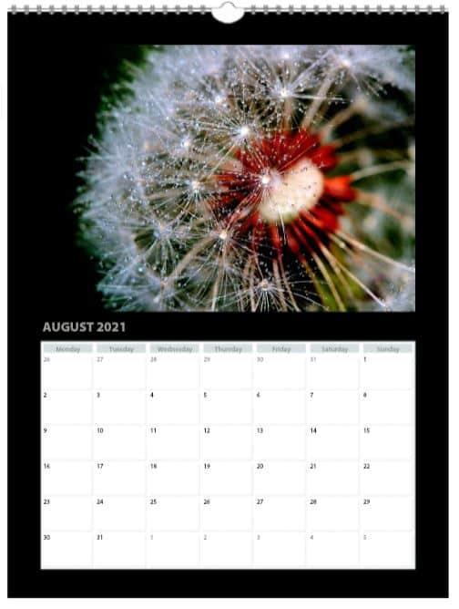 2021 A3 Premium Flower Calendar Page