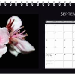 2021 Classic Flower Desk Calendar