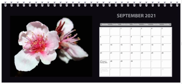 2021 Flower Desk Calendar Page