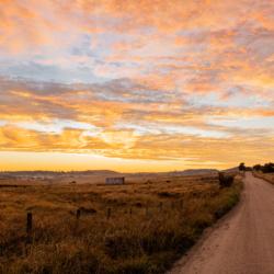 Photographic Wood Print – Dirt Road at Dawn