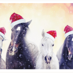 Horses with Santa hats greeting card from Cloud Publishing