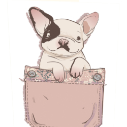 Patch the pocket dog greeting card