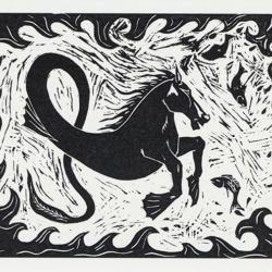 Hippocampus Greek mythological figure as a greeting card by Jon Haworth