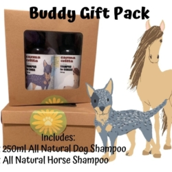 ALL NATURAL SHAMPOO BUDDY PACK 250ML