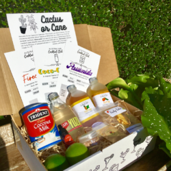 Cactus or Cane – Cocktail Box