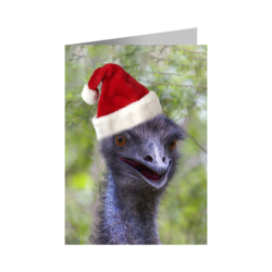 Christmas Card – Emu