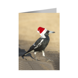 Christmas Card – Magpie