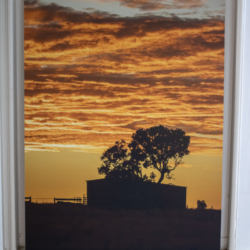 Photographic Wood Print – Dawn Silhouette
