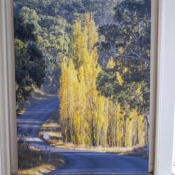 Photographic Wood Print – Golden Bend