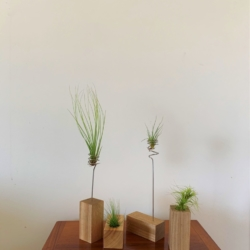 Rectangle Air Planters