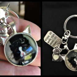 'I speak for those who have no voice' Cat Key Chain / Bag Clip