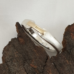 Brushed Sterling Silver Ring with 9ct Gold Band