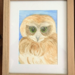 'Opal the Owlet' Signed Original Framed Watercolour – Free Shipping