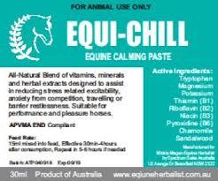 Equi-Chill Calming Paste