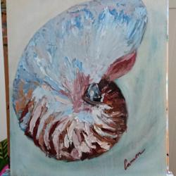 Nautilus Impasto