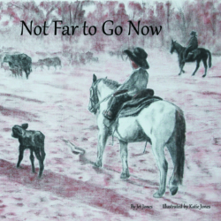 Not Far to Go Now (hardcover)