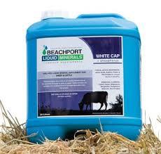 Beachport Minerals White Cap (Tropical Supplement)