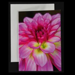 Flower Greeting Card – Pink Pompom Dahlia