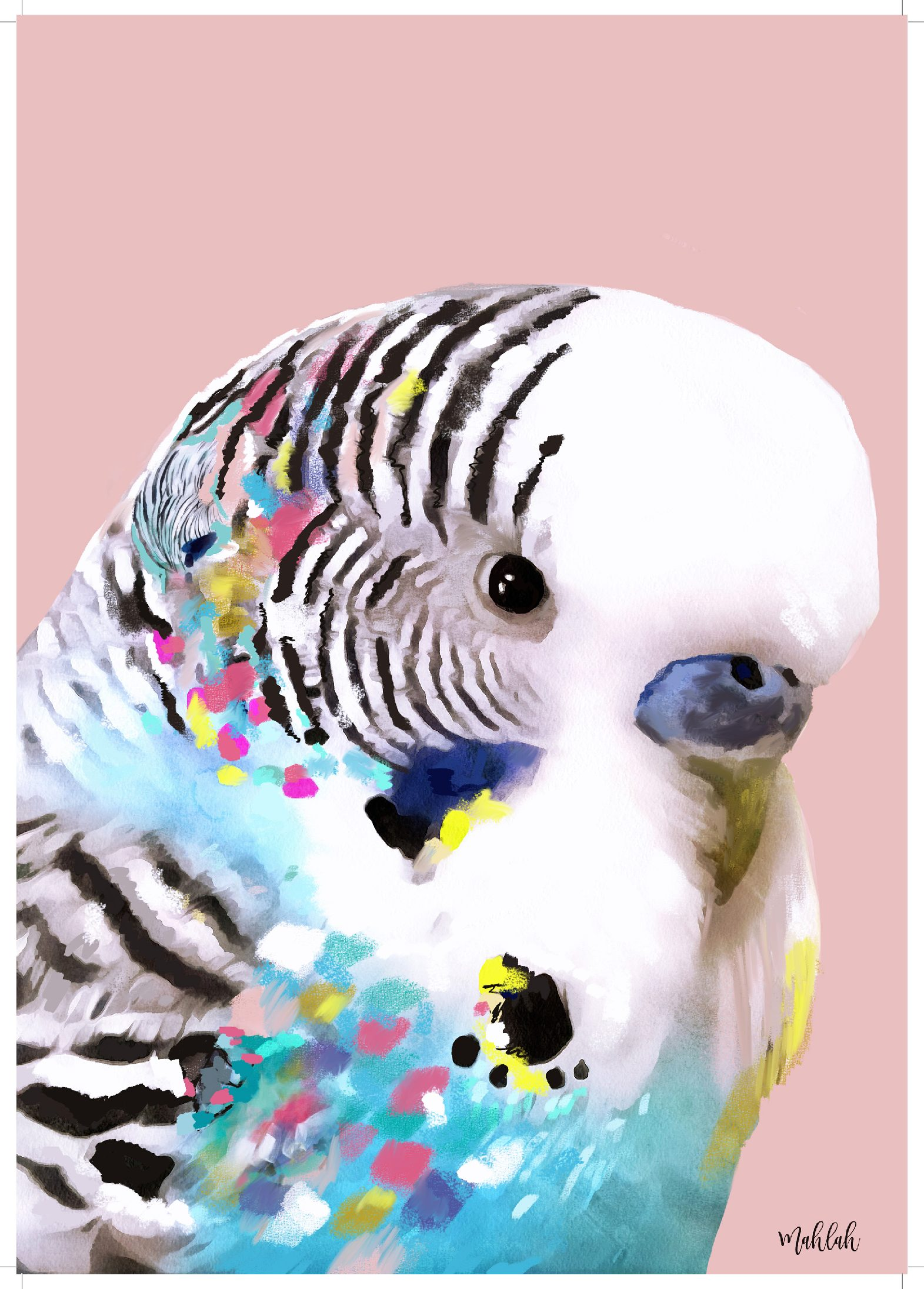 A3 300gsm unframed Budgie Print by Mahlah