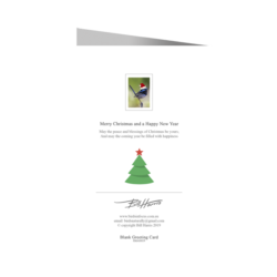 Christmas Card – Fairy-wren