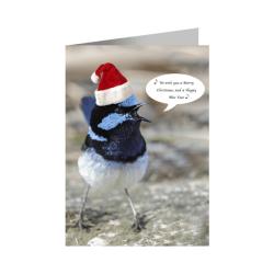 Christmas Card – Singing Fairy-wren