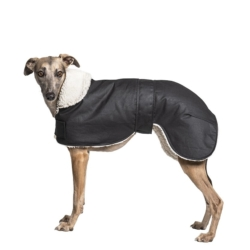 Waterproof Dog Coat – Whippet / Lurcher / Italian Greyhound Coats