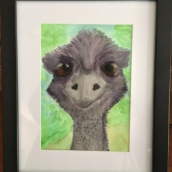 'Eddie the Emu' Signed Original Framed Watercolour – Free Shipping