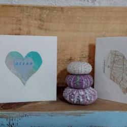 cards on shelf