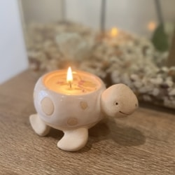 Turtle candle pot