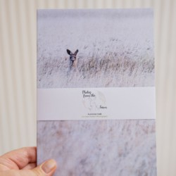 Fun & Colourful Photos from the farm Australian made printed Notebooks