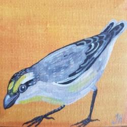 Striated Pardalote – Original Painting