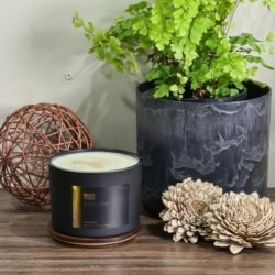 Lavender – Triple Wick Candle