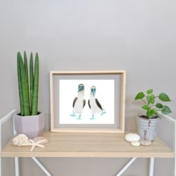 BONO & BODI – Blue-Footed Boobies Art Print