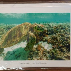 CORAL SEA COLLECTION 5 – POST CARD PACK