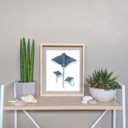 ELENA – Eagle Ray Art Print