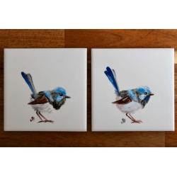 Superb Fairywren Ceramic Tile Coasters – Set of Two